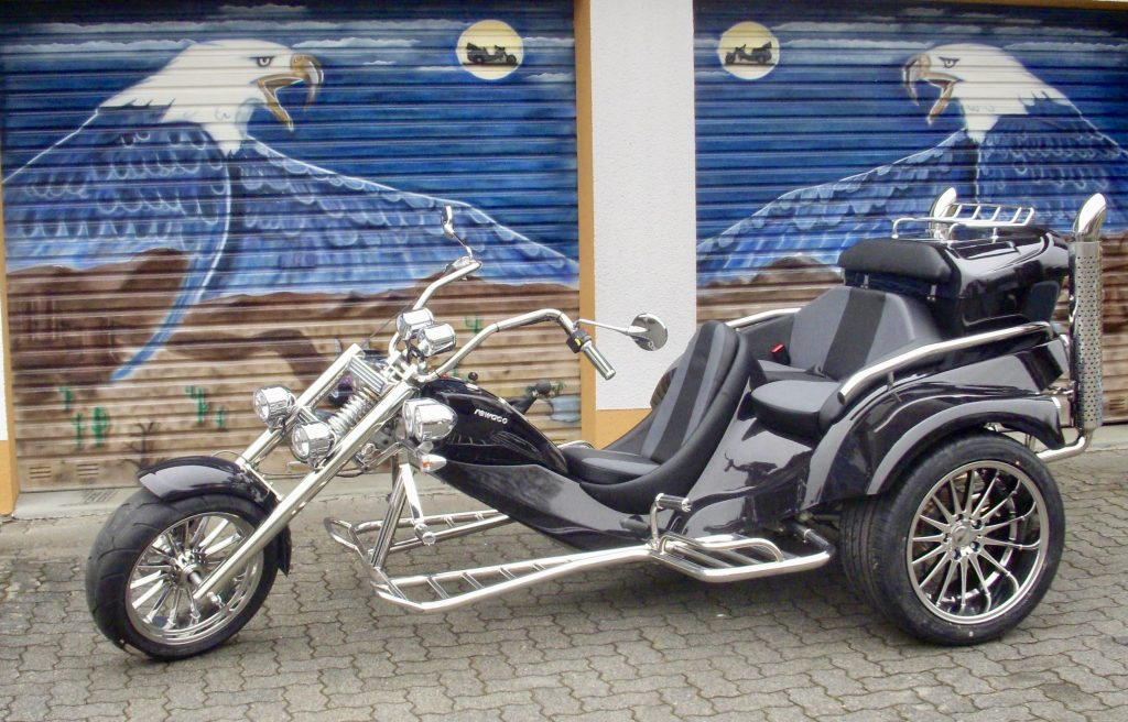 gebraucht trike fx 5 family 107 trike world rent buy. Black Bedroom Furniture Sets. Home Design Ideas